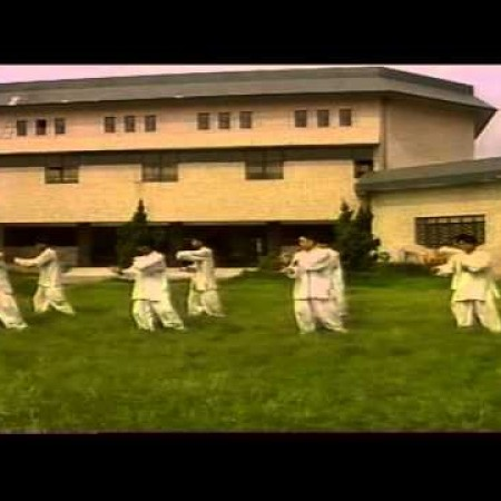 Chen Style Tai Chi Cannon Fists by Wang Xian Instructor Group