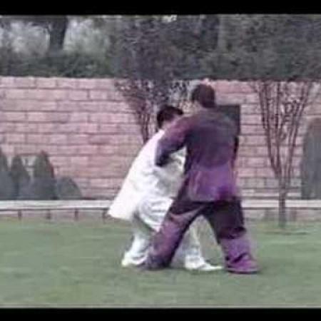 Taiji - Chen Style Kungfu application (Wang Zhanjun)