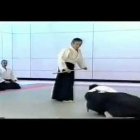 Nobuyoshi Tamura Sensei