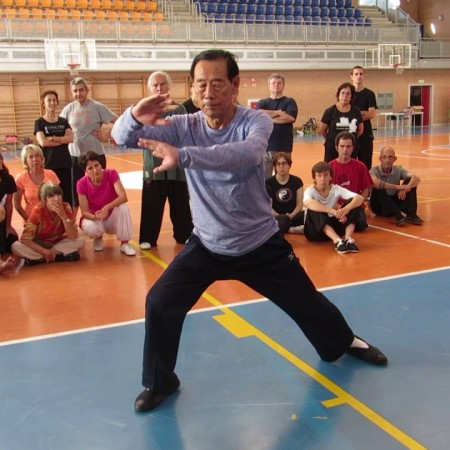 Grandmaster Wang XI'an - Ba Shi (8 Movement Form) - Pamplona, Spain - 2016
